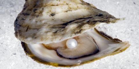 Bivalve, Natural material, Shell, Close-up, Oyster, Molluscs, Shellfish,
