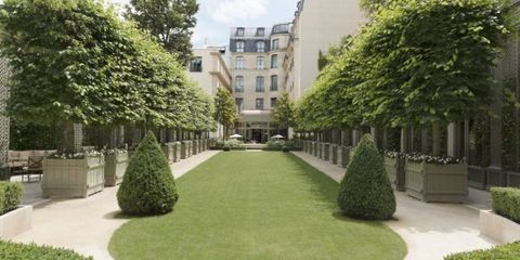 Grass, Green, Plant, Window, Property, Shrub, Neighbourhood, Garden, Real estate, Woody plant,