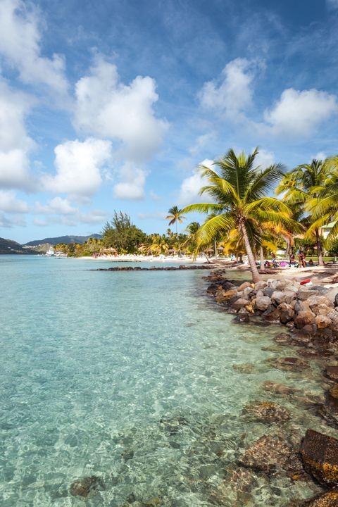 Body of water, Sky, Coastal and oceanic landforms, Cloud, Coast, Woody plant, Arecales, Shore, Tropics, Caribbean,