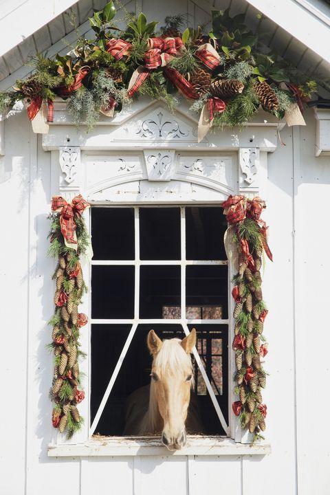 holiday decorations horse barn