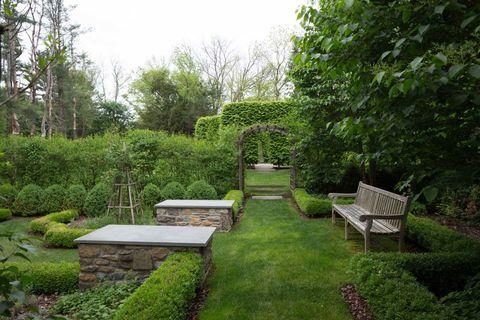 Vegetation, Plant, Shrub, Garden, Groundcover, Outdoor furniture, Yard, Park, Backyard, Bench,
