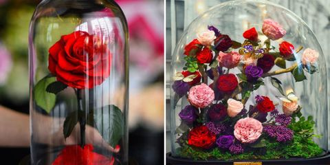 Flower, Garden roses, Cut flowers, Pink, Floristry, Flower Arranging, Rose, Red, Bouquet, Plant,