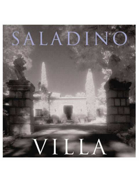 The cover of Mr. Saladino's <i>Villa</i>.