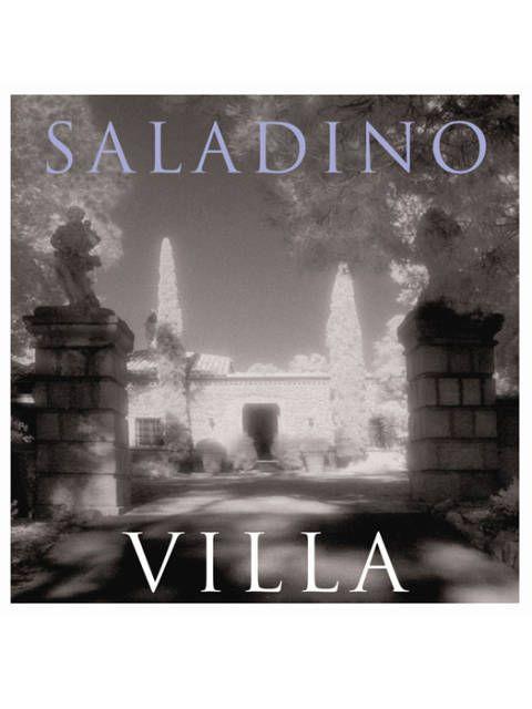 The cover of Mr. Saladino's <i>Villa</i>.