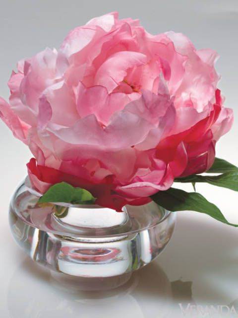 "Natural Decorations' shockingly real fabric peony, $69/set of 2; <a href=""http://www.ndi.com/"" target=""_blank"">ndi.com</a>."