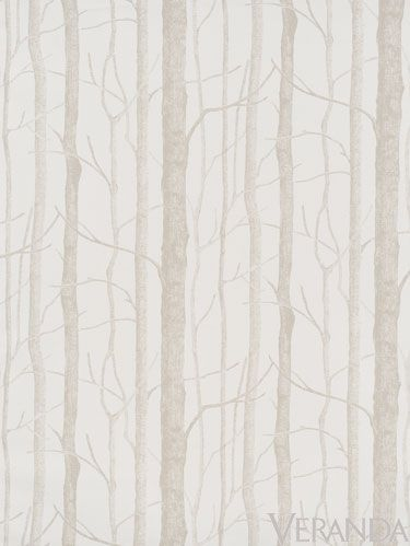 Branch, Twig, Wood, Atmospheric phenomenon, Trunk, Grey, Forest, Beige, Woodland, Fog,