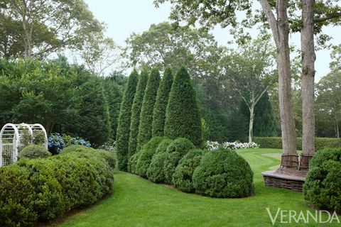 Shrub, Plant, Garden, Tree, Hedge, Woody plant, Groundcover, Evergreen, Park, Landscaping,