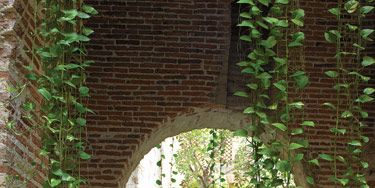 Water connects home's original and new architectural elements in enclosed patio. Pothos vines enliven brick walls of original <i>aljibe</i>, or rainwater reservoir. Reproduction bust of <i>La danse </i>by French sculptor Jean-Baptiste Carpeaux.