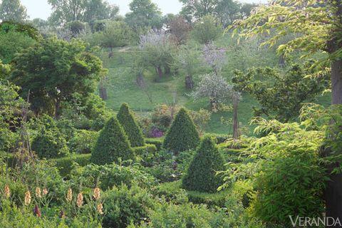 Vegetation, Shrub, Garden, Plant community, Botany, Groundcover, Biome, Botanical garden, Landscaping, Hedge,