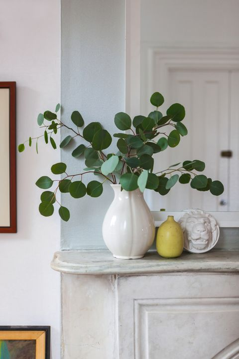 Serveware, Leaf, Interior design, Wall, Dishware, Fixture, Vase, Artifact, Still life photography, Picture frame,