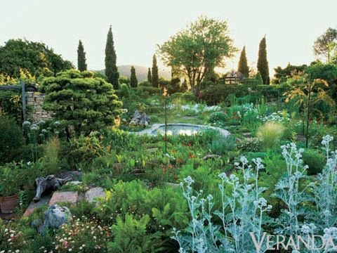 Well Read Mediterranean Landscape Design