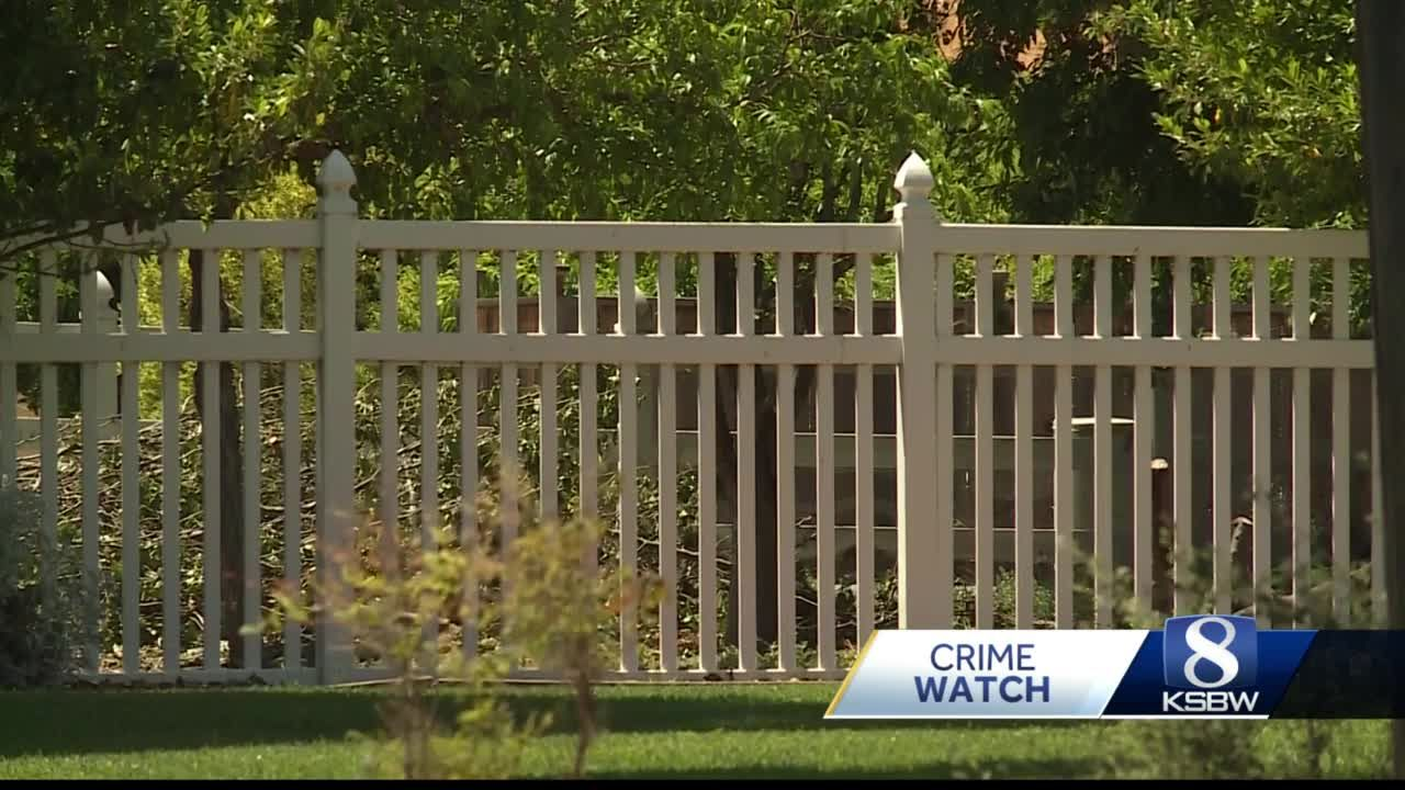 Suspected burglar shot in Hollister home