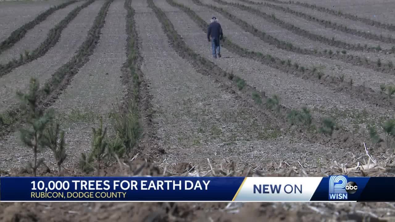 Family starts to plant 10,000 trees on Earth Day