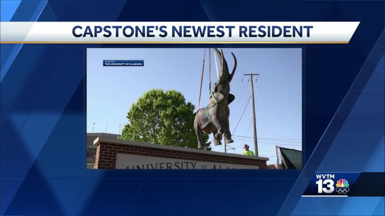 Tuska elephant statue installed next to Bryant-Denny Stadium