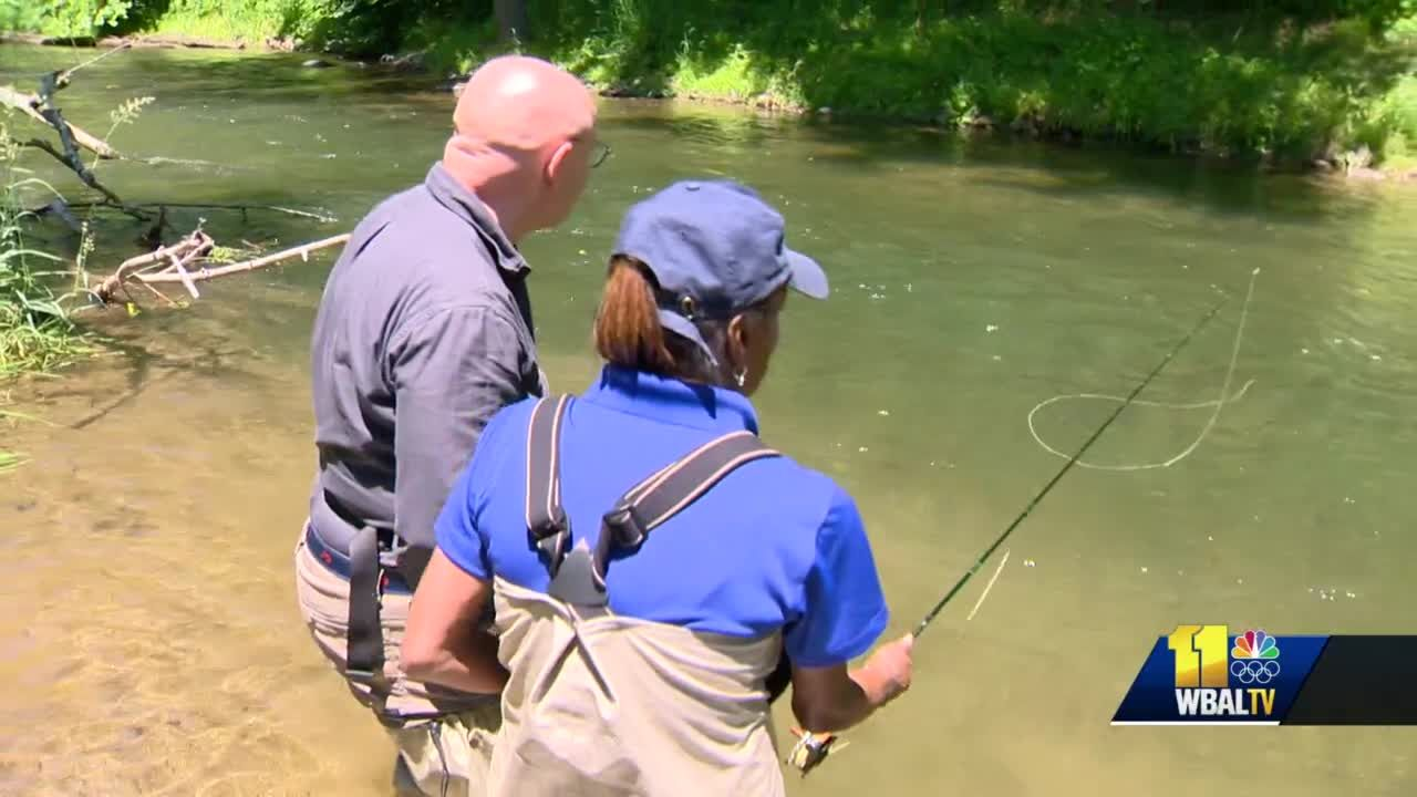 Can Lisa catch fish using the cicada flies? You have to see this
