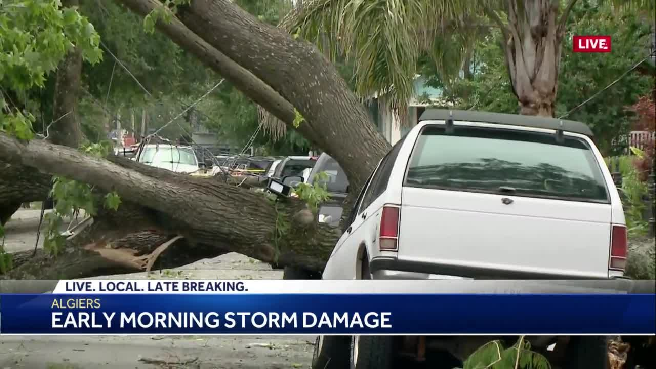 NWS starts assessing storm damage in Uptown, Algiers