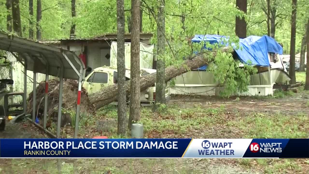 Mississippi storms topple trees, knock out power