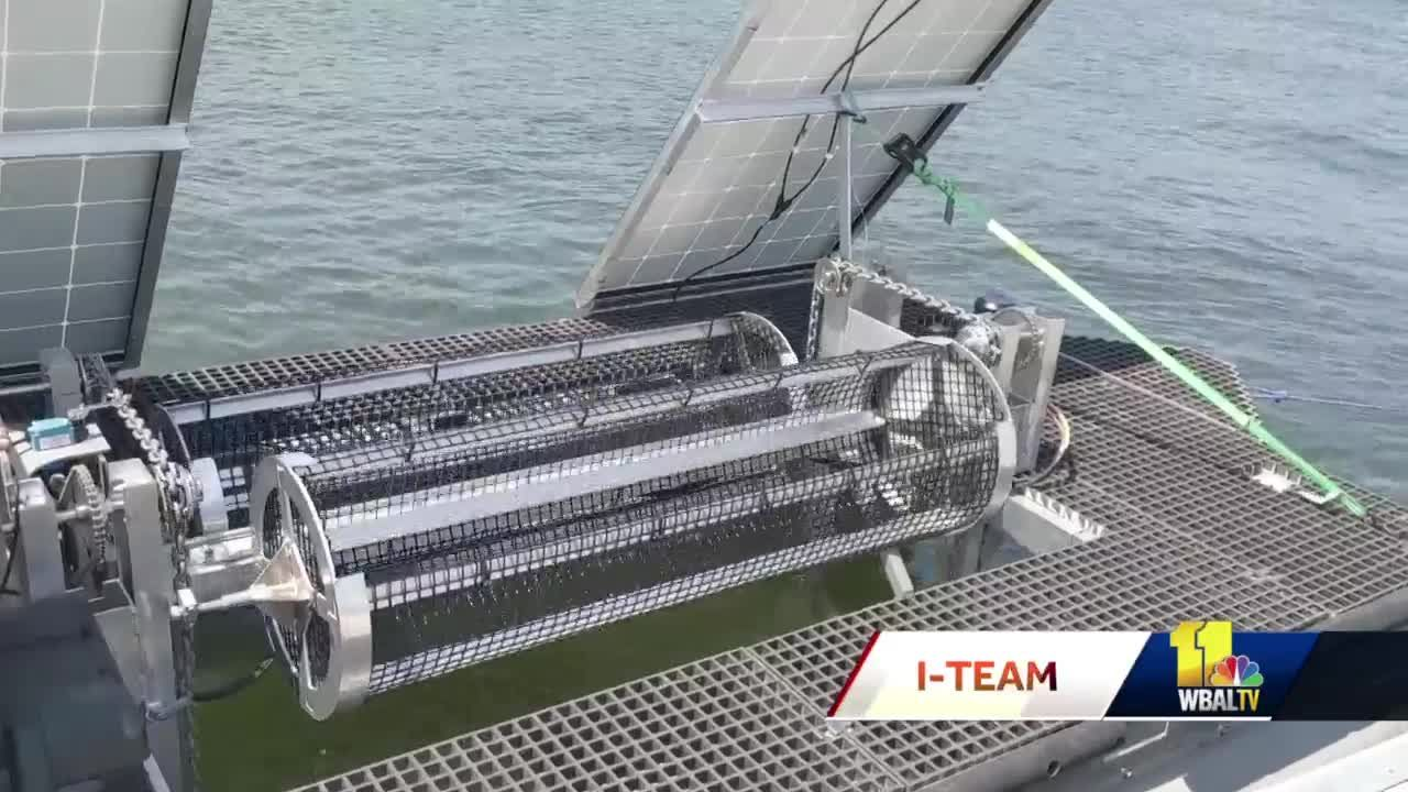 Solar Oysters creates high-tech way to farm oysters