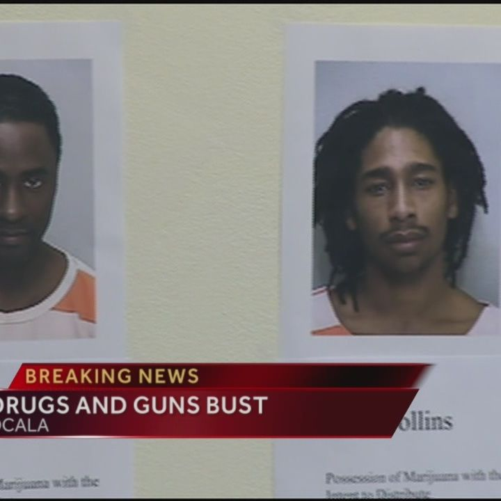 Illegal drugs, weapons seized in Marion County bust
