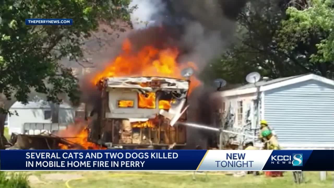 Perry mobile home fire kills 11 cats, 2 dogs