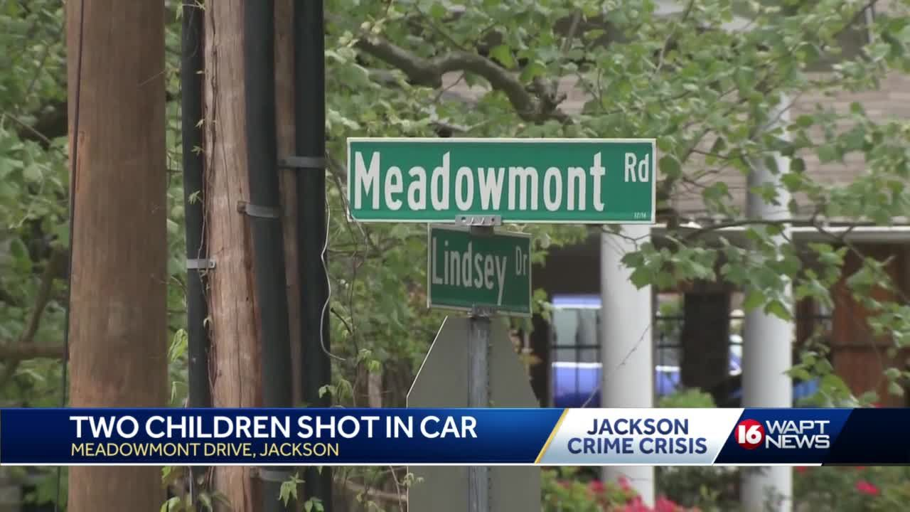 Two children injured in domestic shooting