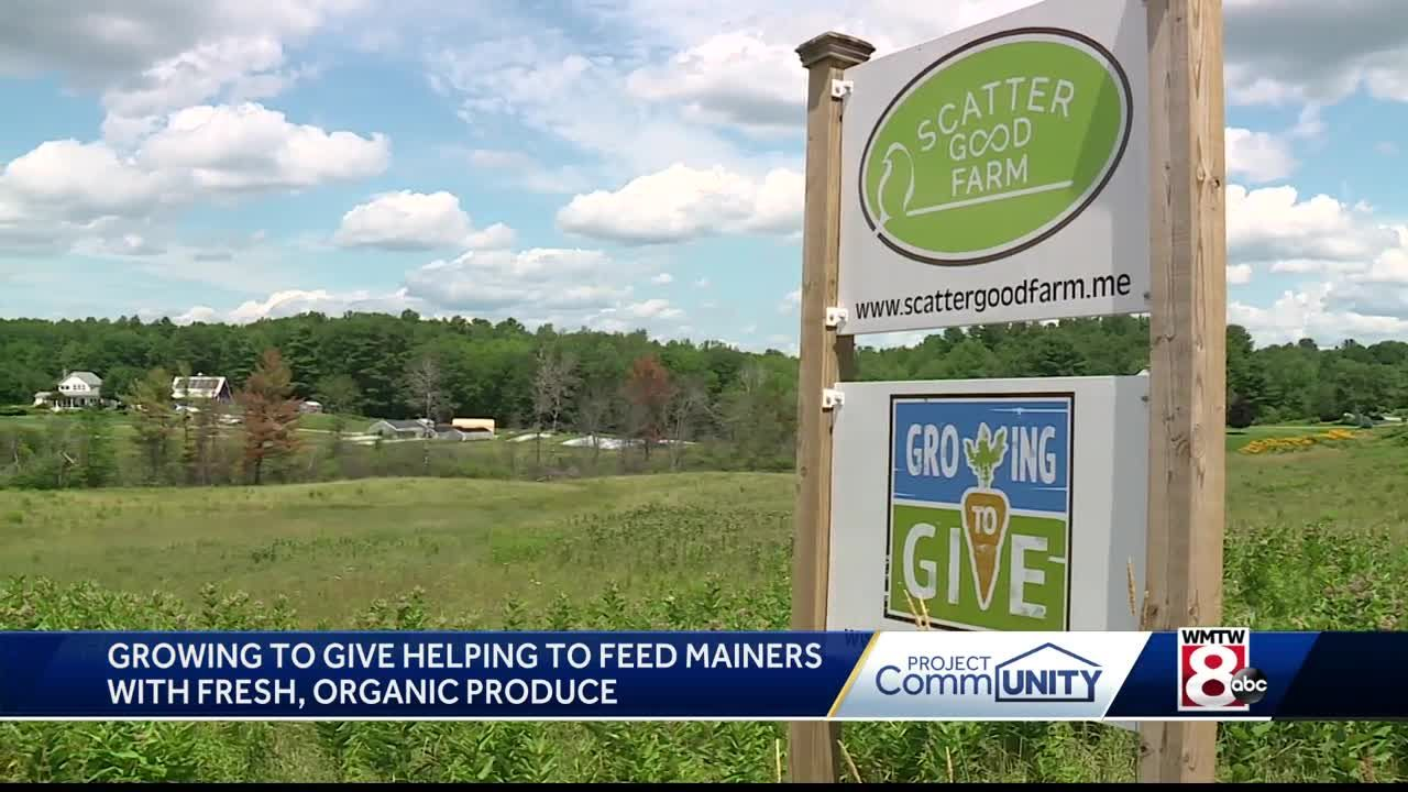 Brunswick group grows fresh produce for food banks
