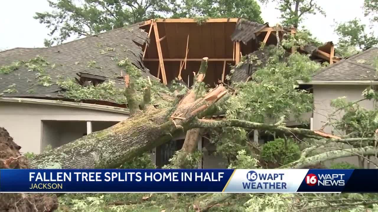 'Heartwarming to see so many people trying to help': Residents clean up damage after severe storms