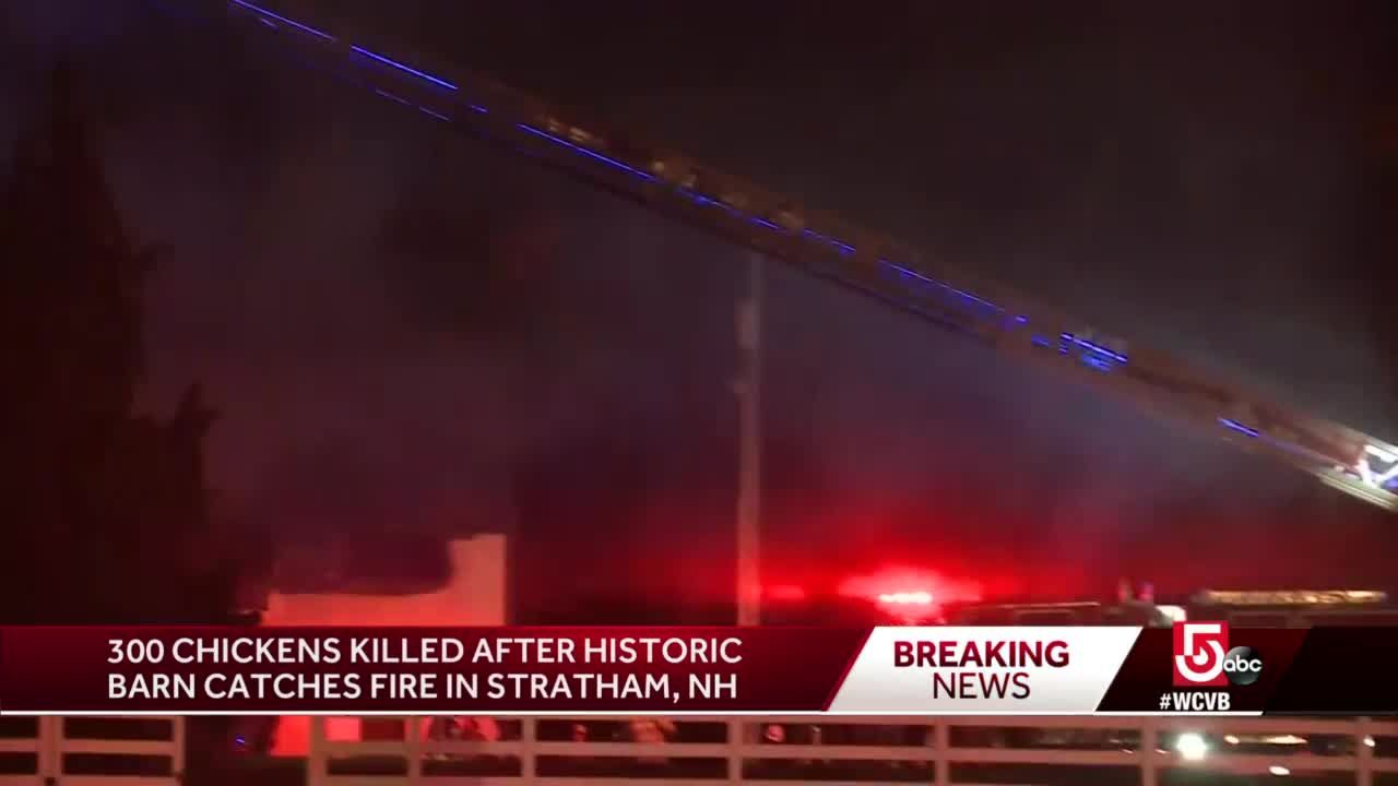 300 chickens killed in fire on NH farm