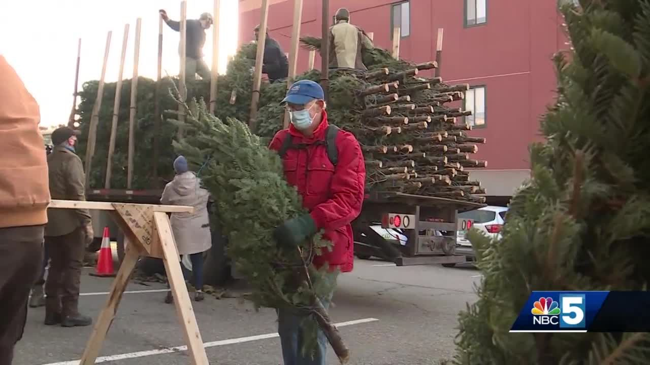 Annual COTS Tree Sale kicks off Wednesday