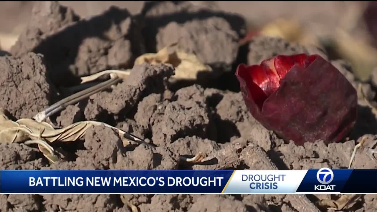 Most severe drought on record in New Mexico