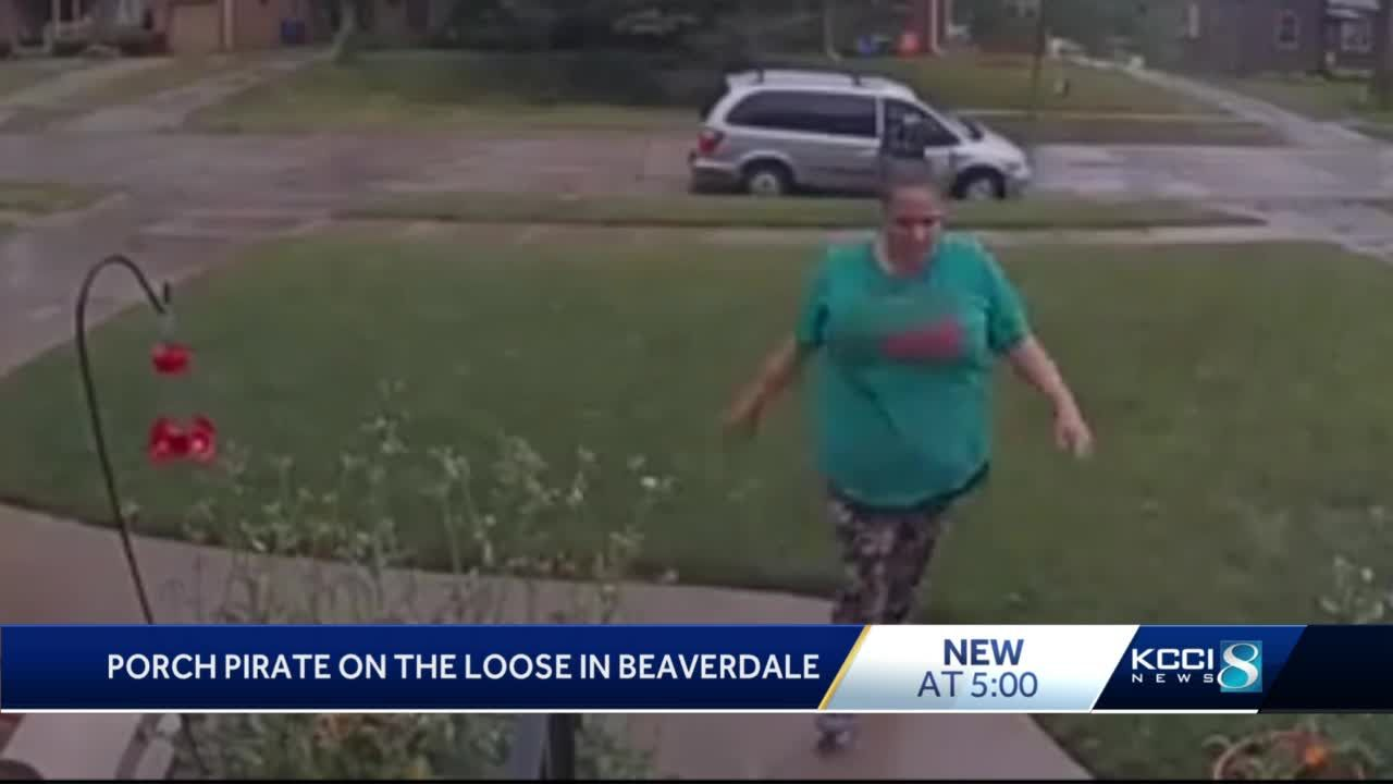 Ring camera catches Beaverdale porch pirate in action