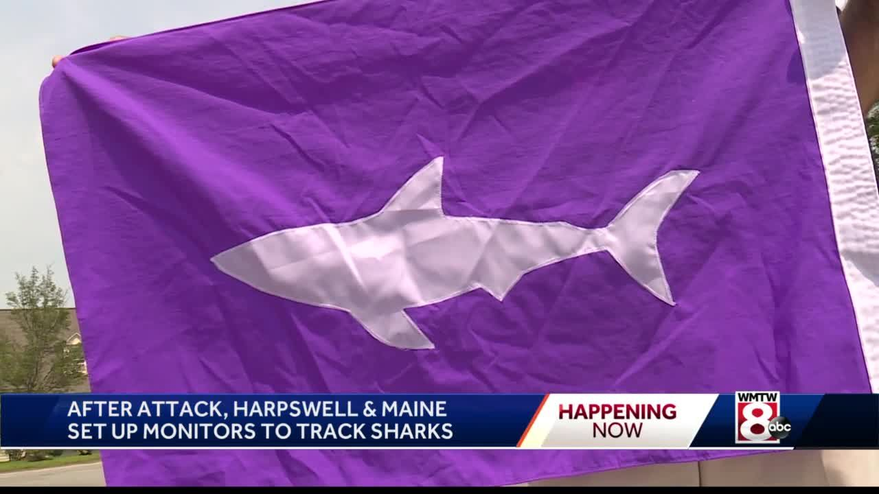 Year after deadly shark attack, Maine town, state make changes