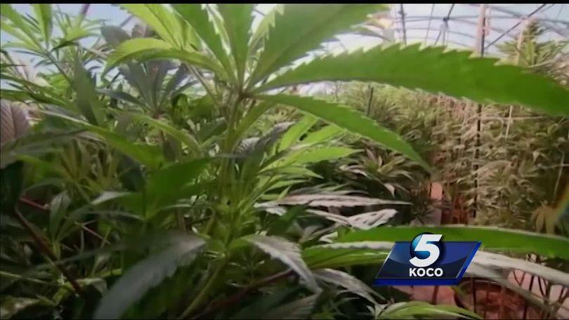 Senate passes bill allowing Oklahoma farmers to grow hemp