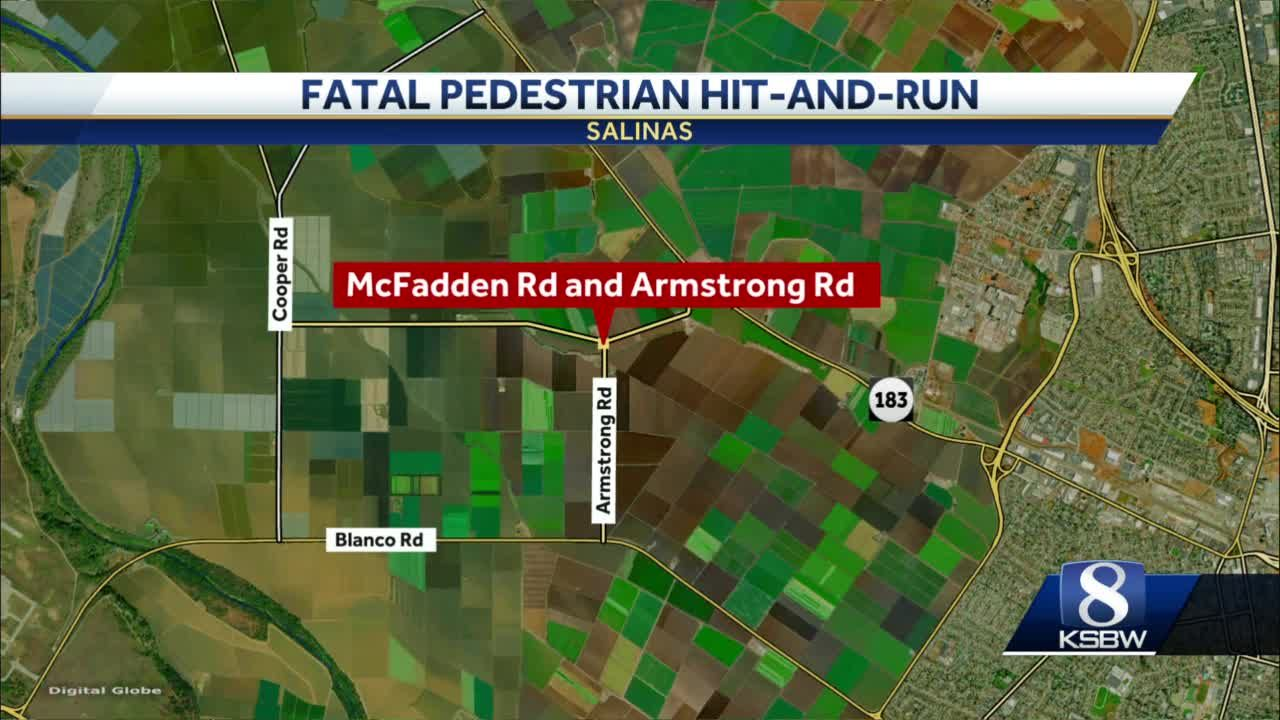 Ag worker killed in hit-and-run crash in Salinas fields