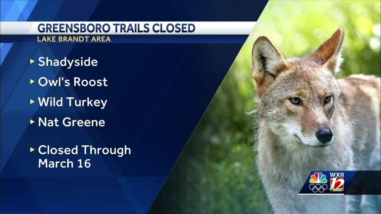 Greensboro trails closed after wild animal attack