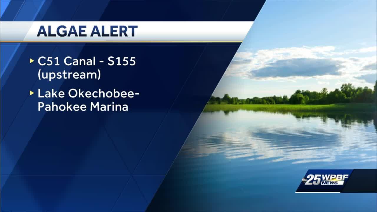 Palm Beach County blue-green algae health alerts