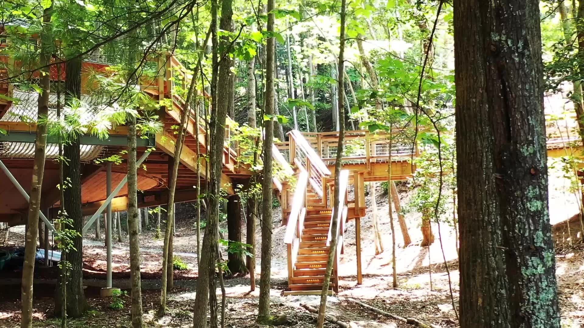 This Epic Treehouse Was Inspired by the Millennium Falcon