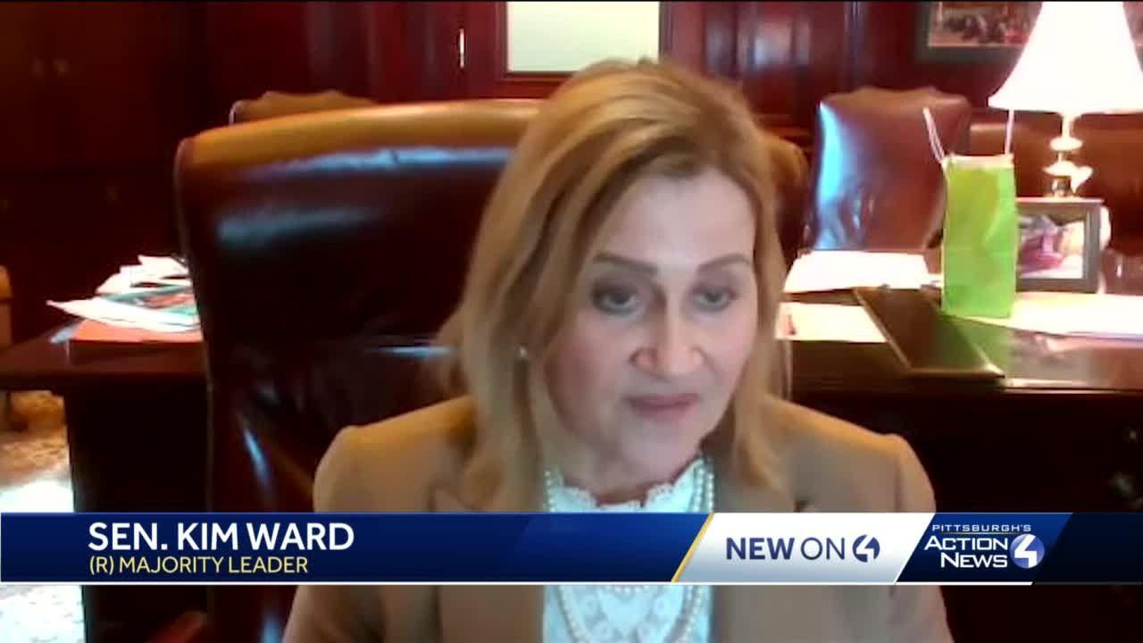Sen. Kim Ward diagnosed with breast cancer