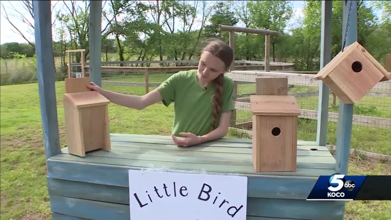 Children start booth at Arcadia Farmers Market to sell birdhouses, cold beverages