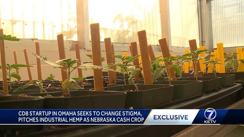 CBD startup in Omaha has a message for Nebraska governor