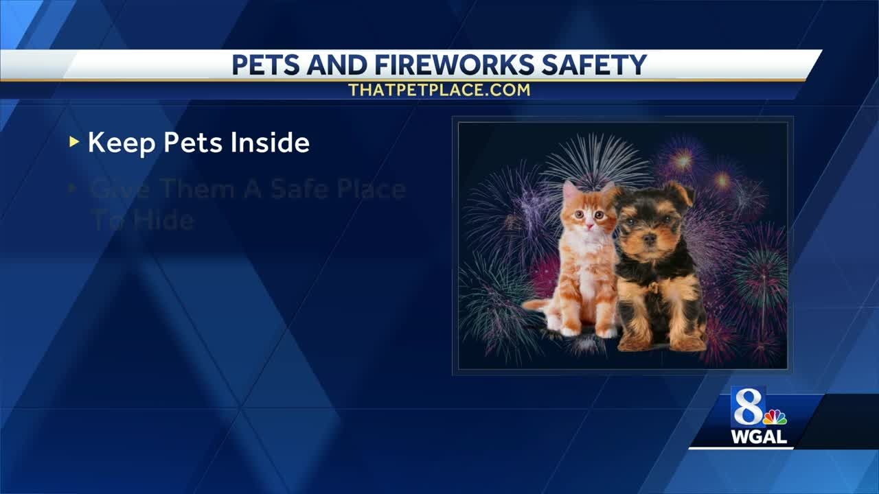 880b9bd554c3 Tips for pets and fireworks safety