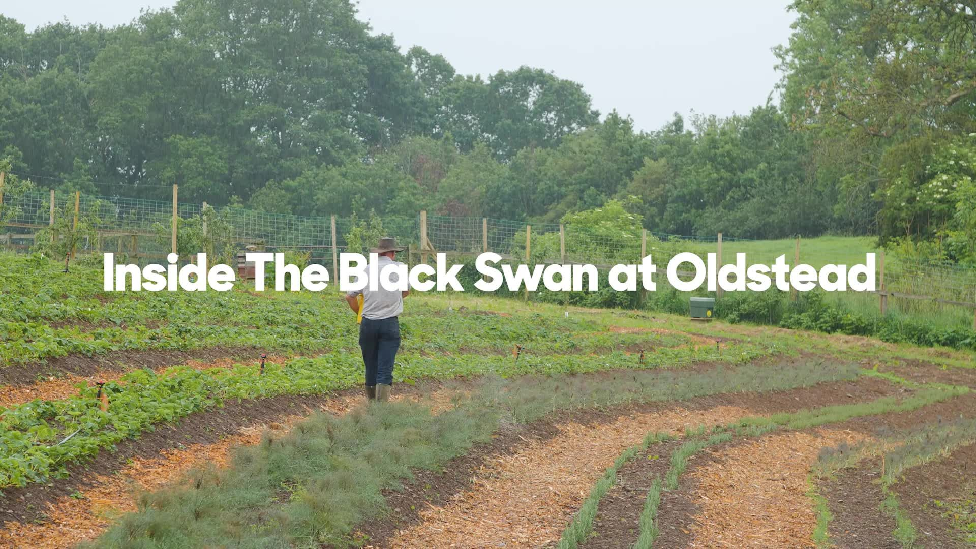 Inside the Black Swan at Oldstead: The Michelin-starred Yorkshire restaurant that champions seasonal and sustainable food