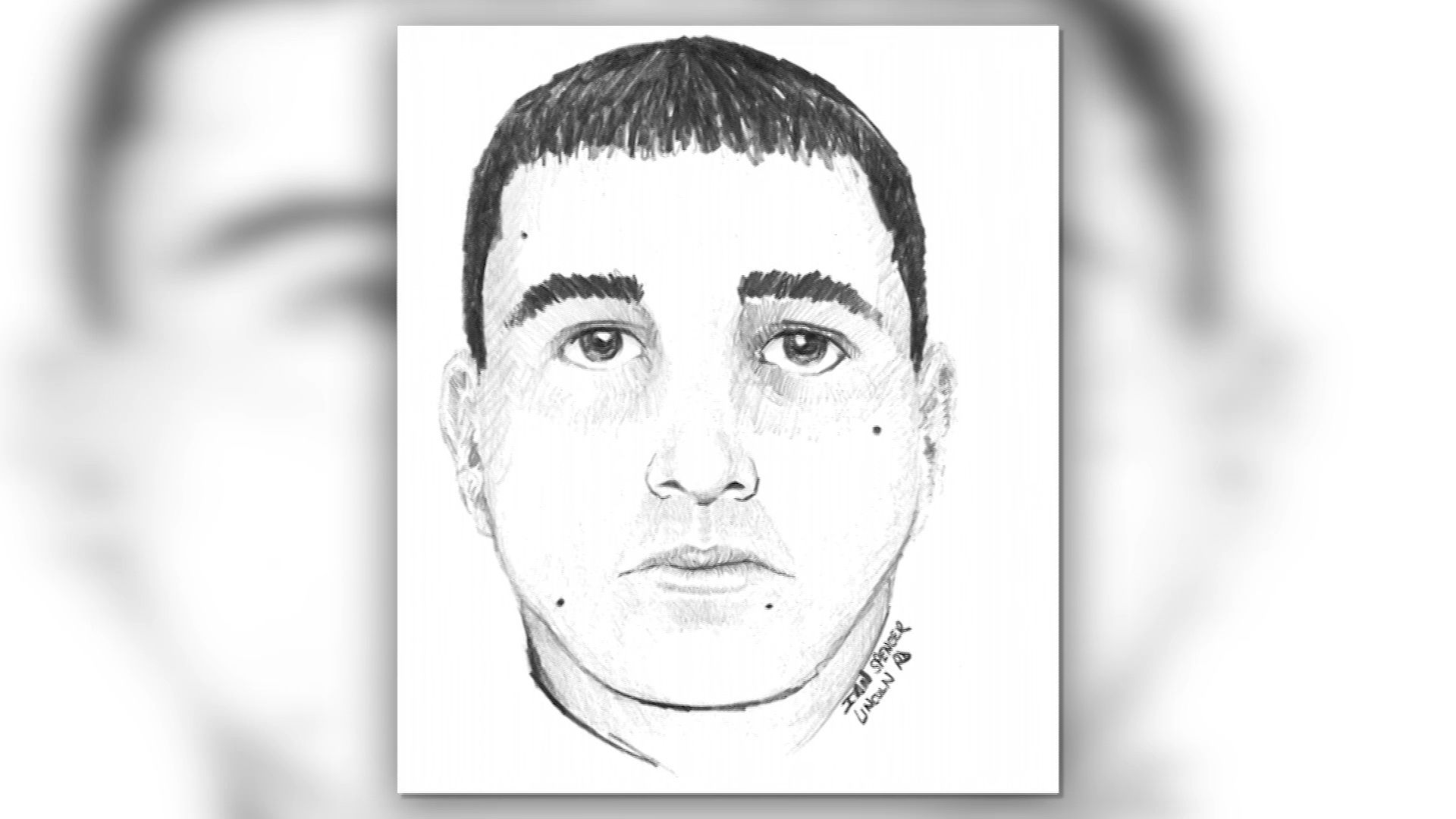 Wayland police searching for man who allegedly tried to lure child into vehicle