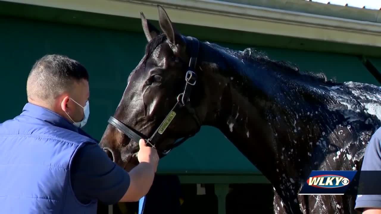 Test results clear Medina Spirit ahead of Saturday's Preakness
