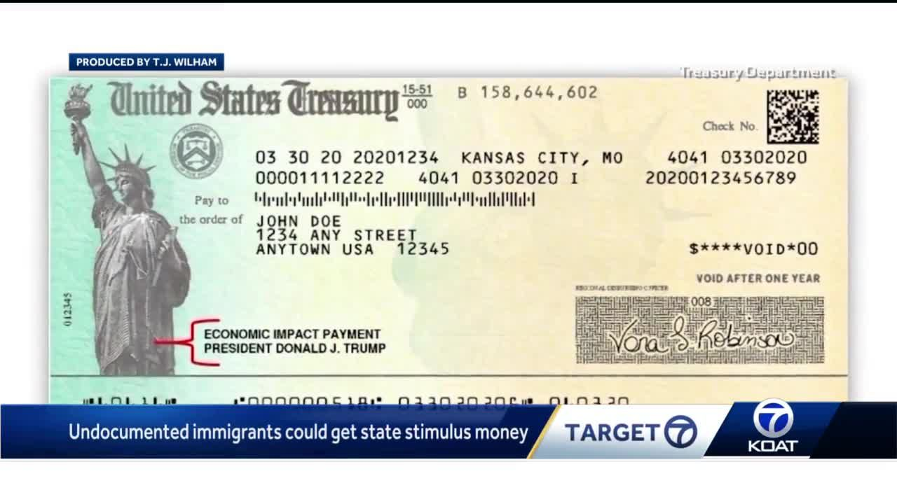 Undocumented immigrants could get state stimulus money