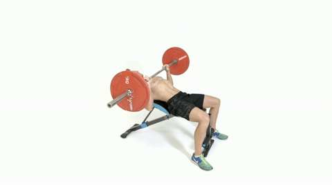 Sensational How To Do The Decline Barbell Bench Press Ibusinesslaw Wood Chair Design Ideas Ibusinesslaworg