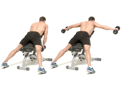 How to do the incline prone reverse dumbbell fly