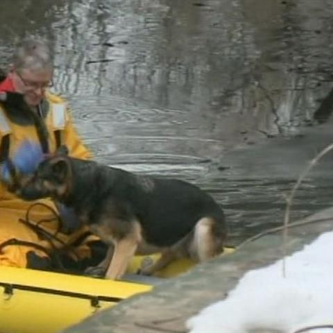 Body found in Cedar Creek