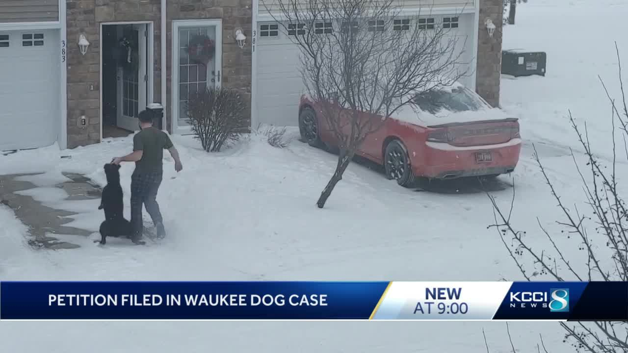 Attorney files petition after Waukee man is caught on video dragging dog