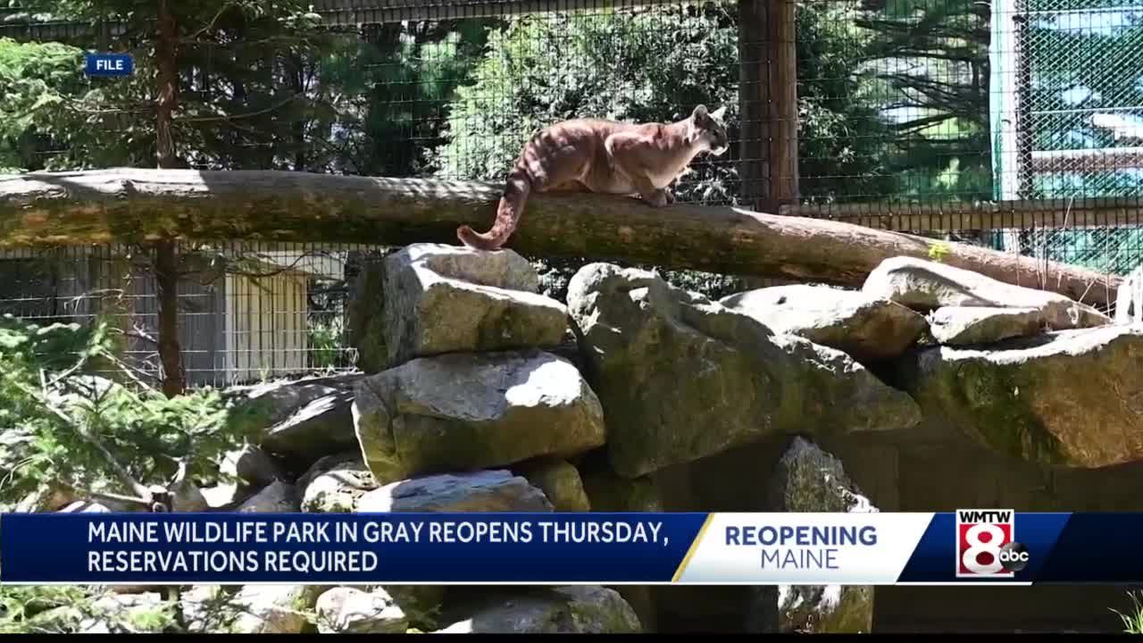 Maine Wildlife Park opens for season Thursday